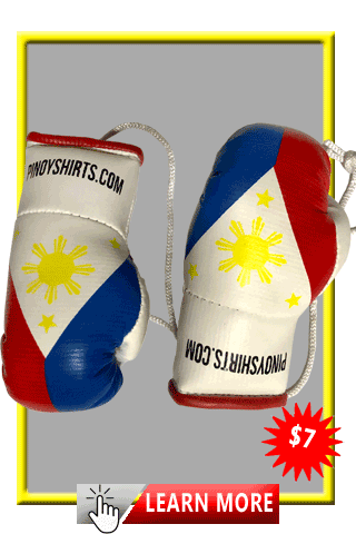 Hanging Rear View Mirror Boxing Gloves